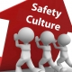 Safety Culture Consultant